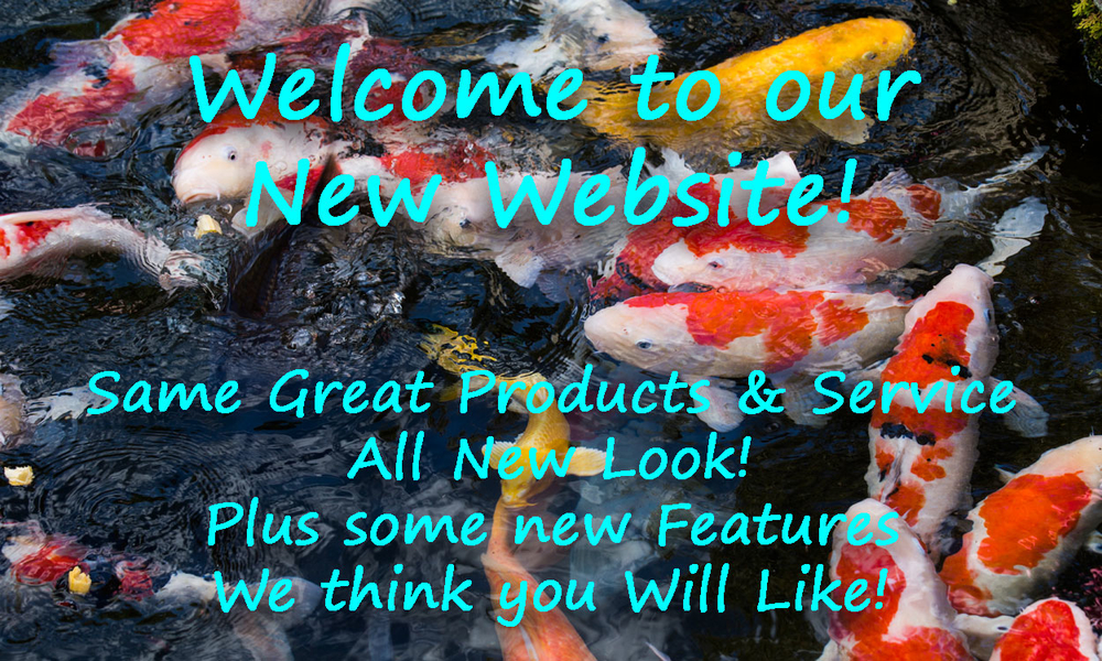 New Site Welcome