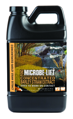 Microbe-Lift Barley Straw Concentrated Extract | Barley Products