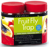 Image Fruit Fly Trap