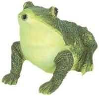 Image Spouting Frog Sitting