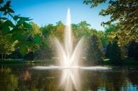 Image Atriarch Fountain 1.5 hp 230v