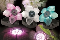 Image Flower LED Lights