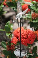 Image Chameleon Color Changing All-Season Garden Stake-Hummingbird