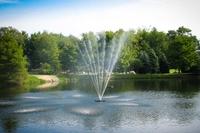 Image Belcrest Fountain 1.5 hp 230v