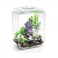 Image biOrb LIFE 15L with MCR LED Clear