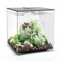 Image biOrb CUBE 60 Aquarium - 16 gallon LED Black 54515