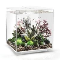 Image biOrb CUBE 60 Aquarium - 16 gallon LED White 54520