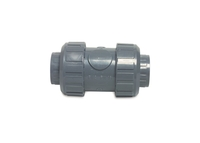Image Double Union Non Return Valve