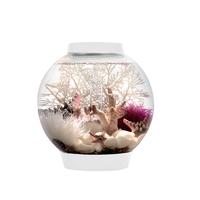 Image biOrb CLASSIC 15 Aquarium - 4 gallon White