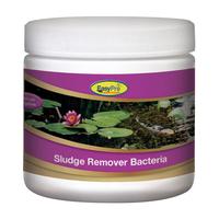 Image EasyPro Sludge Remover Bacteria SBB