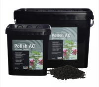 Image Crystal Clear Polish/ Activated Carbon
